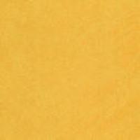 9610 PE ТЕРРА Желтая