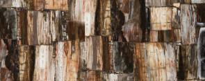 8331 Petrified Wood-Classic